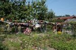 Gartenfest KGV