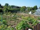 Gartengehungen