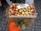 Herbstfest_5